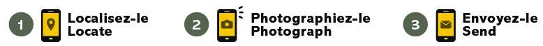 icone-web.jpg (691 KB)